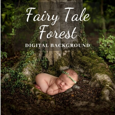 JD Fairy Tale Forest Digital Background